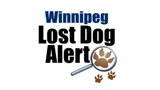 Winnipeg Lost Dog Alert