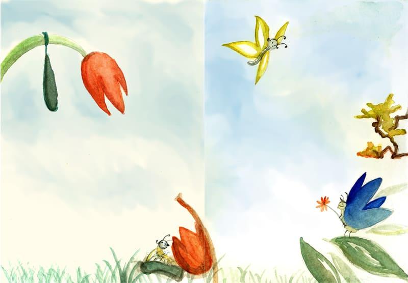 borboletas 2a parte 2506569854 o